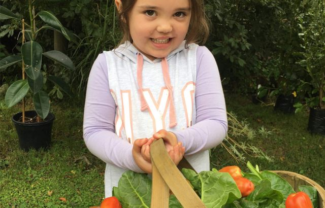 Vegan and waste-free childcare wins education award