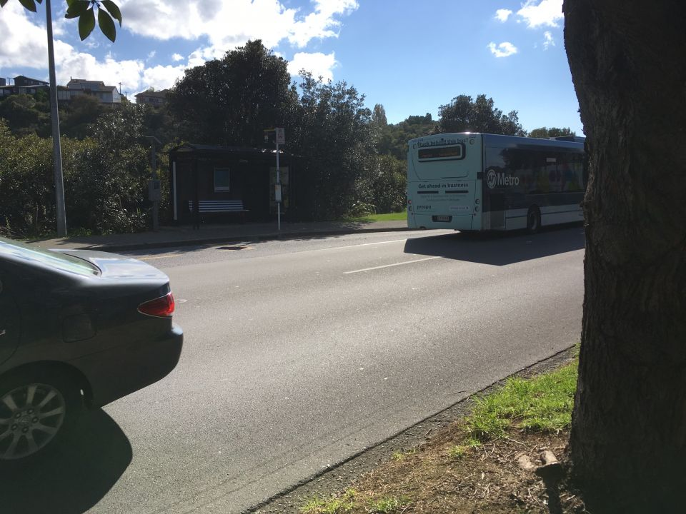 Students petition for pedestrian crossing