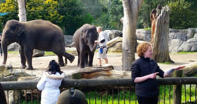 ​AUT students bring down barriers at Auckland Zoo
