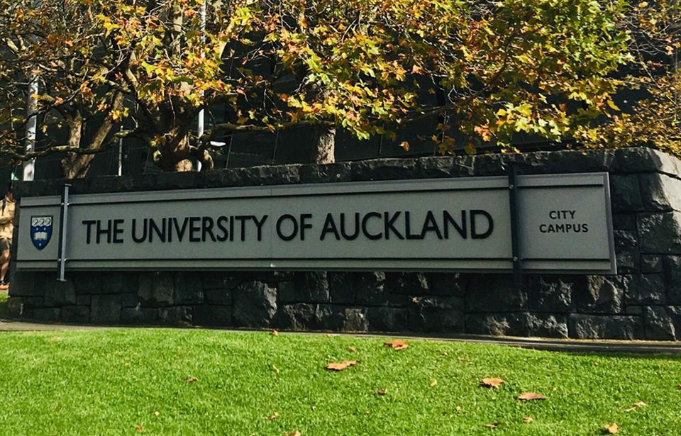 University of Auckland taking actions to address discrimination
