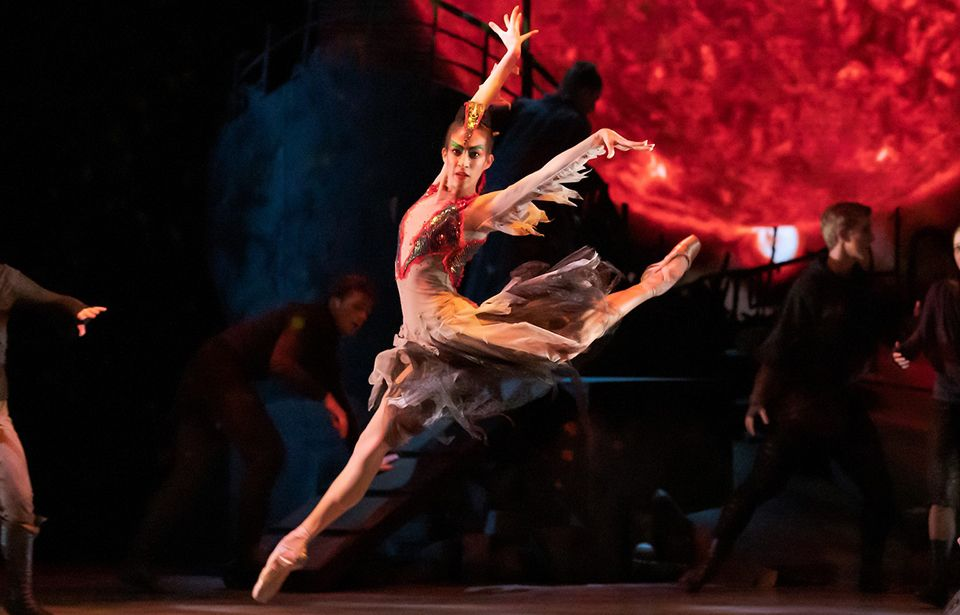 Royal New Zealand Ballet goes online as lockdown closes shows