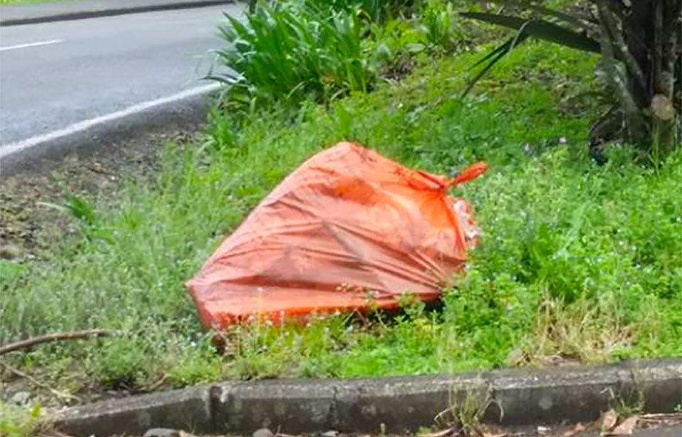 Watercare rejects Titirangi's call for bins