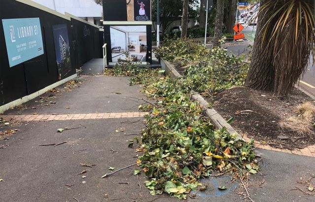 Businesses struggle with storm power outage